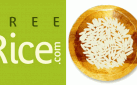 Freerice: Feeding the World through Playing and Learning